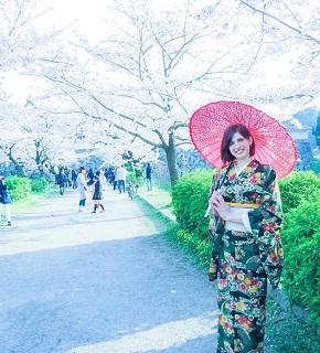 お花見は訪日旅行客にも大人気!